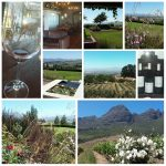 Heartbizz personalised Wine Tours, tours and transport