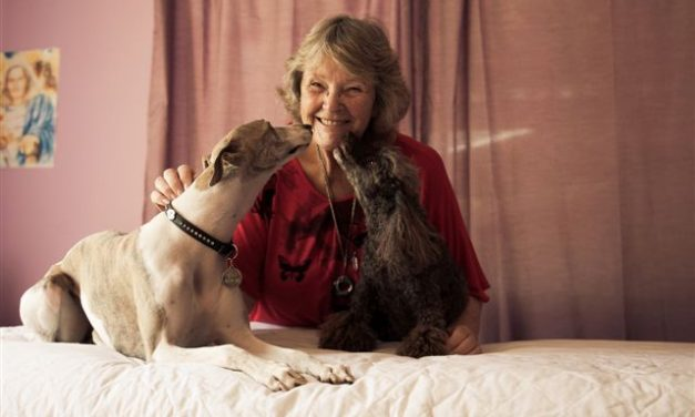 Animal Healing with Wendy Thompson